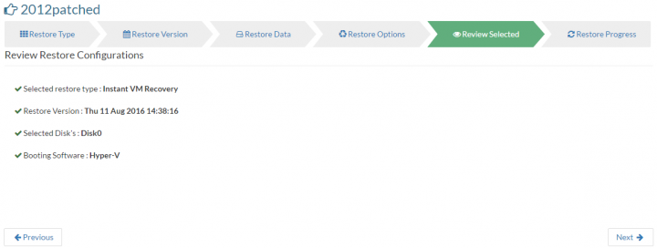 Vembu ImageBackup - Instant VM Recovery - Review Screen