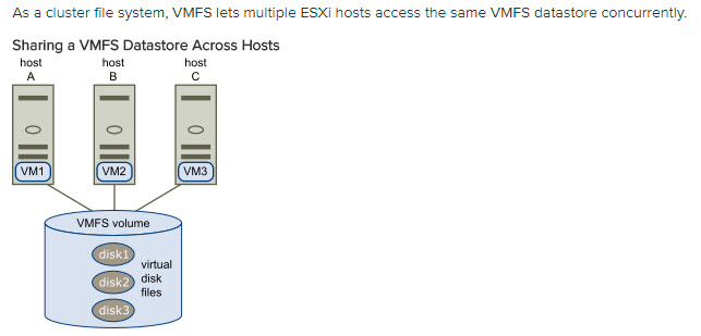 Shared VMFS Datastore