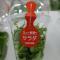 Toshiba producing Lettuce