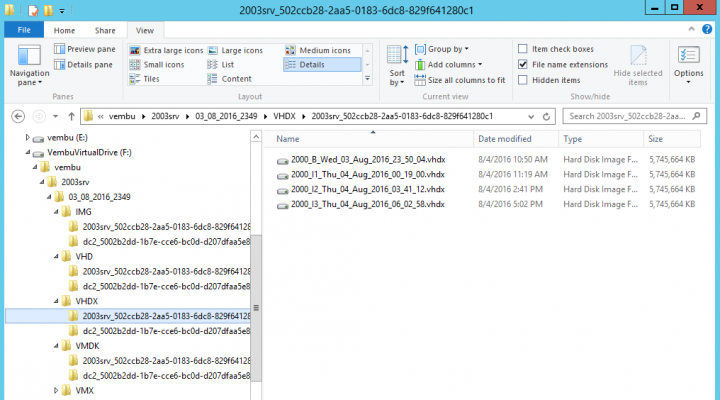 Vembu Virtual Drive can expose the same backup as VMDK, VHD, VHDX or IMG