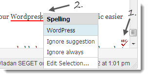After the Deadline - Spellchecking plugin