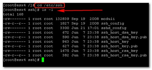 How to activate root access SSH in ESX 4.0 Server