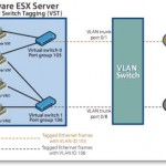 Great KB on how-to configure VLANS on vSwitches, pSwitches and VMs
